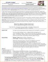 Best Resume Format Sample Top Chronological Resume Template 100 New Resume Format 100 77