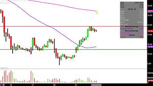 Overstock Com Inc Ostk Stock Chart Technical Analysis For 05 21 2019