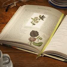 fr rhs latin for gardeners more than 1 500 essential plant names and the secrets they contain the royal horticultural society