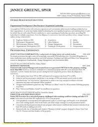 Executive Resume Writing New Fresh Fresh Executive Resume Writing