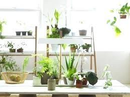 garden plant stand plant stands indoor plus tall metal plant stand plus garden plant stands plus