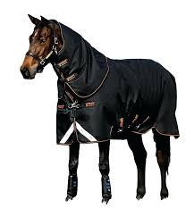 Horse Turnout Blanket Size Chart Amigo Horse Blankets Emmajohnson Co