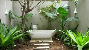 Bathroom Design:Amazing Sarah Raven Plants Good Bathroom Plants Rush Plant  Indoor Hanging Plants For