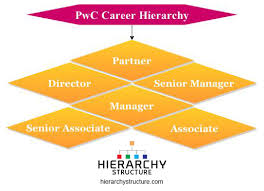 Pricewaterhousecoopers Pwc Career Hierarchy Chart