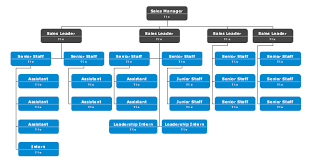 Team Chart Template Try This Sales Division Org Chart Template To Nicely