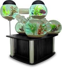 Office Aquarium  Google Search  Pinterest