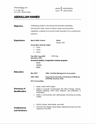 Sample Auditor Resume Objectives Sidemcicek Com