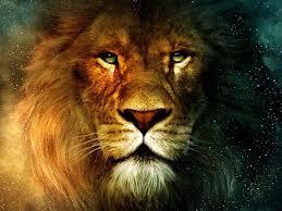 3D Lion Wallpapers - Top Free 3D Lion ...