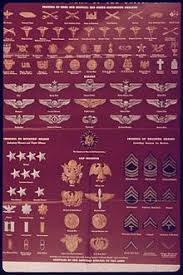 Army Ranking System Chart United States Army Enlisted Rank Insignia Of World War Ii