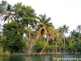 photo essay backwaters of poovar getsetandgo cruising in the river coconut trees on both sides