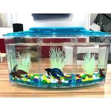 fish tank accessories ideas betta aquarium designs 5 gallon setup decorating decor
