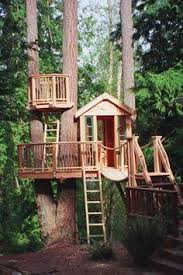 cool kid tree houses.  Tree Who Doesnu0027t LOVE An AWESOME Tree Fort Wine Drinkinu0027 Fort By Golly  Retirement Project May Have To Call The  Throughout Cool Kid Tree Houses O
