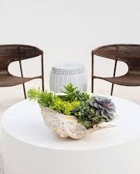 brown wicker chairs with round white