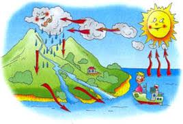 Реферат по теме Значение влажности воздуха