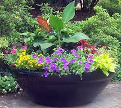 Small Picture 855 best Creative Containers images on Pinterest Plants Flowers