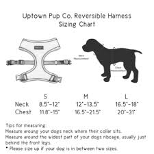 Uptown Pup Co