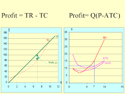 in the table below assuming a horizontal demand curve fixed a firm s profits have been calculated for diffe levels of output