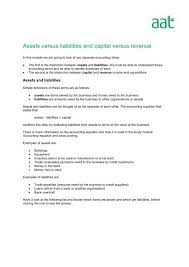 assets versus liabilities and capital