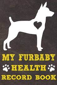 My Furbaby Health Record Book: Rat Terrier Dog Puppy Pet Wellness Record  Journal And Organizer For Furbaby Rat Terrier Owners: Amazon.de: Puppies,  Happy: Fremdsprachige Bücher