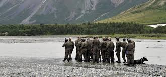 12 Leadership Lessons To Learn From The Navy Seals Inc Com
