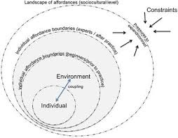 Frontiers Behavioral Repertoire Influences The Rate And