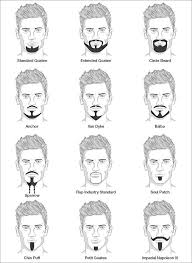 Mens Hair Types Chart Different Goatee Styles For Men Goatee Styles Goatee