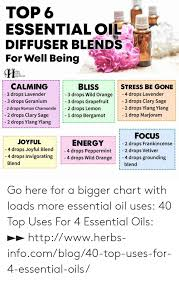 Top 6 Essential Oil Diffuser Blends For Well Being Ppiness