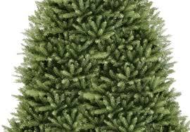 18ft Dunhill Fir Artificial Christmas Tree | Hayes Garden World