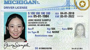 Michigan Driver's Id Immigrants Licenses For House Cards Have Marking Would On Bills