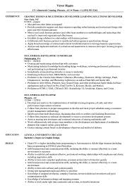 Multimedia Developer Resume Multimedia Developer Resume Samples Velvet Jobs 1