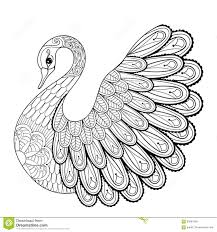 Hand Drawing Artistic Swan For Adult Coloring Pages In Doodle Stock