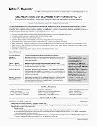 Best Format For Resume Custom 48 Best Resume S Amd Cv S Images On Pinterest Server Resume Example