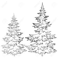 Winter Tree Template Evergreen Tree Outline Gallery 65 Images
