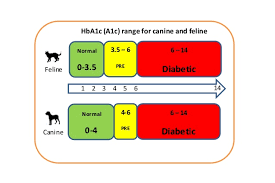 A1c Levels Chart For Diabetics A1c Levels Charts Canine And Feline
