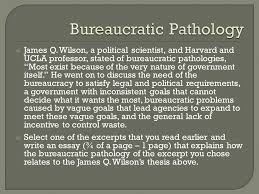 bureaucratic pathology ppt bureaucratic pathology