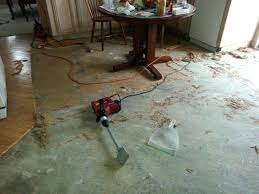 floor adhesive remover photo 1 of delightful how to remove carpet from cement floor 1 removing floor adhesive remover