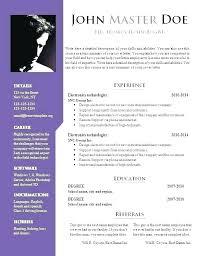 Curriculum Vitae Doc Template Business Plan Template