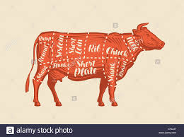 Wild Game Meat Cutting Chart Meat Cut Charts Cow Butcher Shop Beef Vector