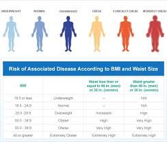 Obesity And Being Overweight Let Us Help You Lose Weight Fast