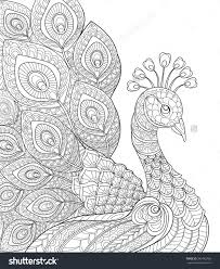 Small Picture Peacock Adult Antistress Coloring Page Black And White Hand