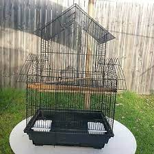parrot cage in Brisbane Region, QLD | Pets | Gumtree Australia Free Local  Classifieds