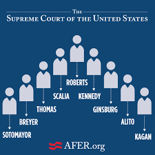 Inside The Supreme Court The Case For Marriage Equality And