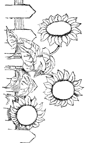 Best 25+ Printable flower coloring pages ideas | Flower coloring ...