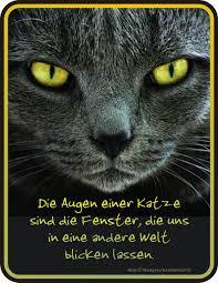 Lustige Sprüche Katzen Spruch Zitat