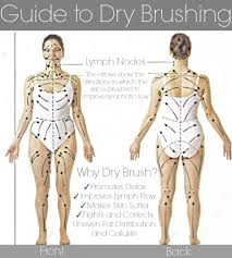 Dry Skin Brushing Chart Body Chart For Dry Skin Brushing Body Brushing Dry