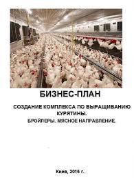 Бизнес план Бройлеры Производство куриного мяса Птицефабрика  Птицефабрика Бройлеры Производство куриного мяса и субпродуктов Цех убоя и фасовки