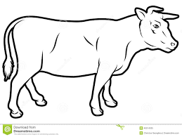 beef cow outline. Modren Outline Beef Cow Illustration For Cow Outline