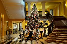 Our top five London Christmas trees – Now. Here. This. – Time Out ...