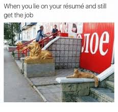 Lying On Resume Mesmerizing When You Lie on Your Résumé and Still Get the Job Jobs Meme on meme