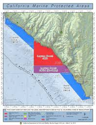 35 Particular Low Tide Chart Dana Point Ca